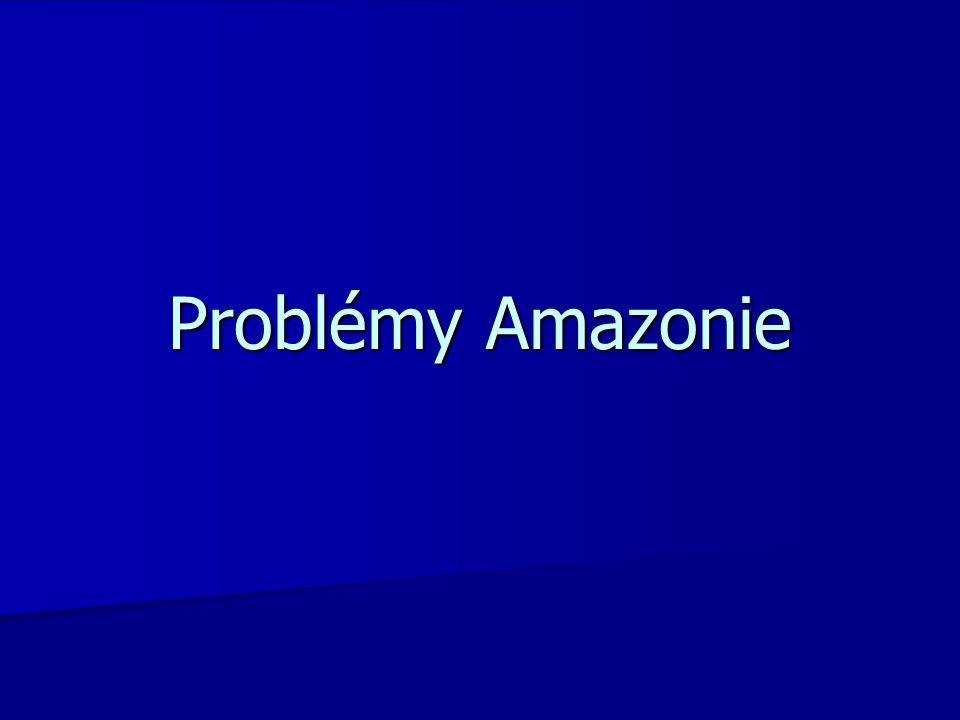 Problémy Amazonie