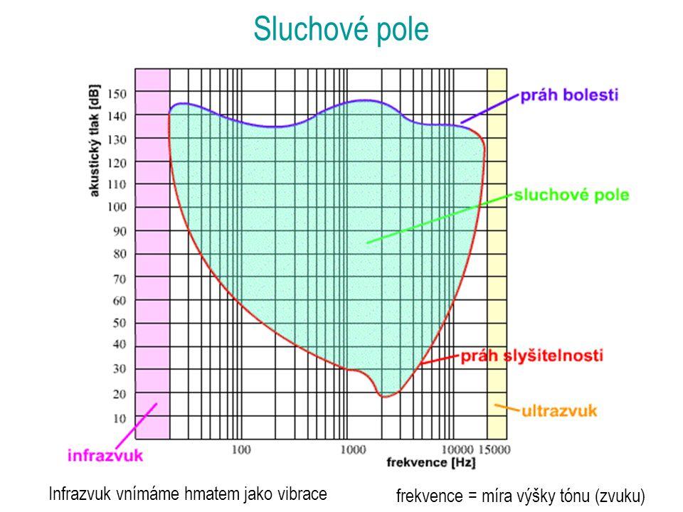 Infrazvuk vnímáme hmatem jako vibrace Sluchové pole frekvence = míra výšky tónu (zvuku)