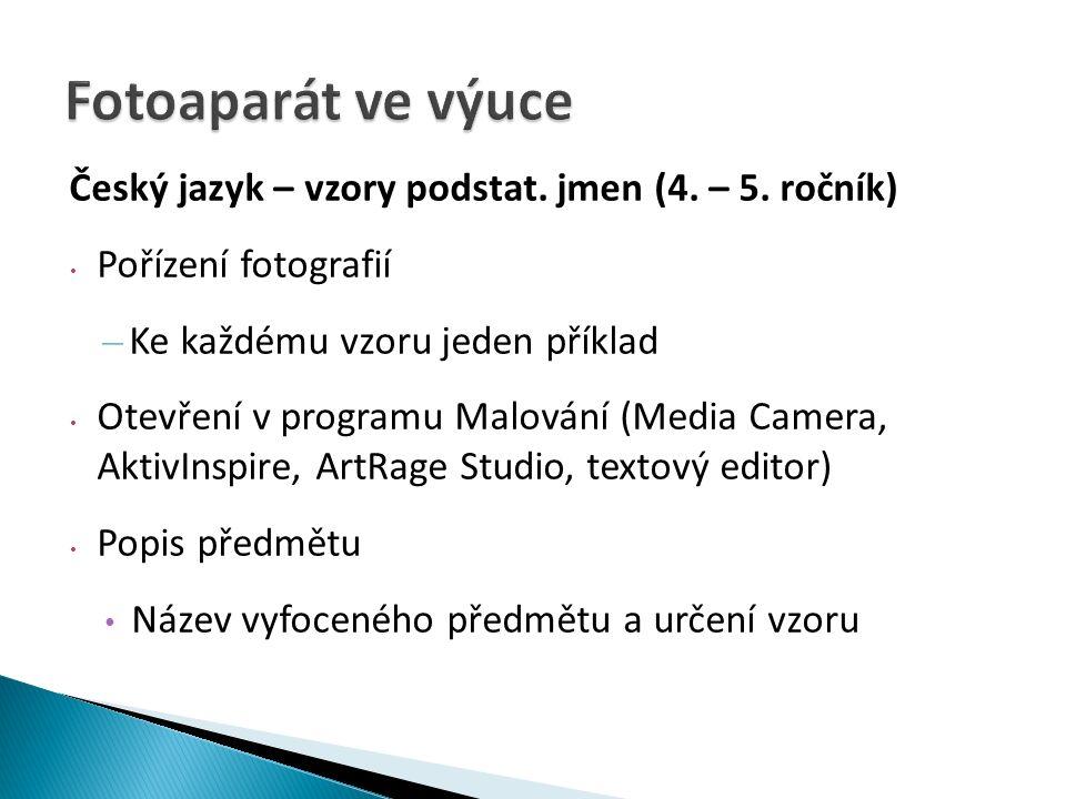 Český jazyk – vzory podstat. jmen (4. – 5.