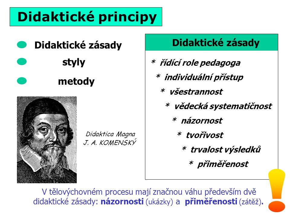 Didaktické principy * řídící role pedagoga * individuální přístup * všestrannost * vědecká systematičnost * názornost * tvořivost * trvalost výsledků * přiměřenost Didaktické zásady V tělovýchovném procesu mají značnou váhu především dvě didaktické zásady: názornosti (ukázky) a přiměřenosti (zátěž).