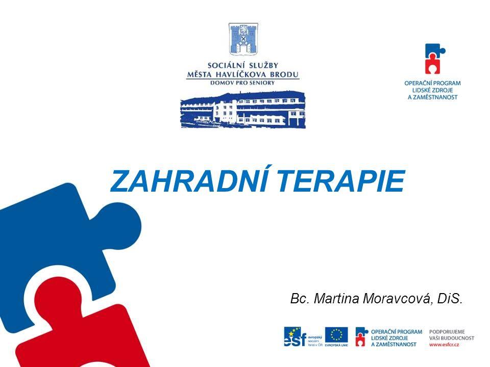 ZAHRADNÍ TERAPIE Bc. Martina Moravcová, DiS.