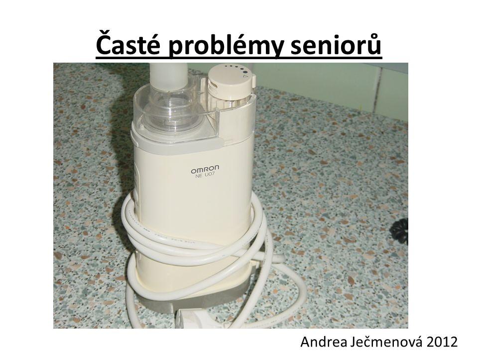Časté problémy seniorů Andrea Ječmenová 2012