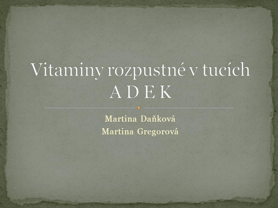 Martina Daňková Martina Gregorová