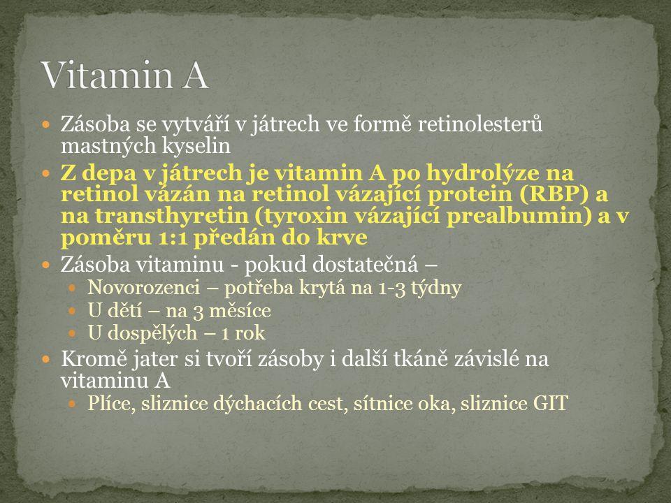 Zásoba se vytváří v játrech ve formě retinolesterů mastných kyselin Z depa v játrech je vitamin A po hydrolýze na retinol vázán na retinol vázající protein (RBP) a na transthyretin (tyroxin vázající prealbumin) a v poměru 1:1 předán do krve Zásoba vitaminu - pokud dostatečná – Novorozenci – potřeba krytá na 1-3 týdny U dětí – na 3 měsíce U dospělých – 1 rok Kromě jater si tvoří zásoby i další tkáně závislé na vitaminu A Plíce, sliznice dýchacích cest, sítnice oka, sliznice GIT