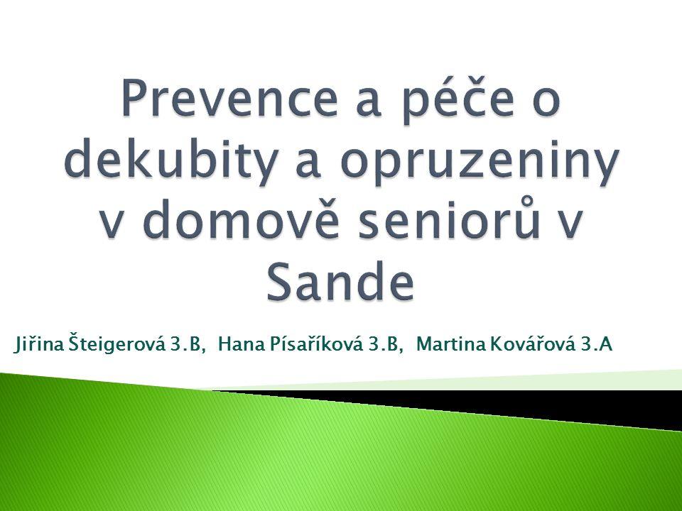 Jiřina Šteigerová 3.B, Hana Písaříková 3.B, Martina Kovářová 3.A