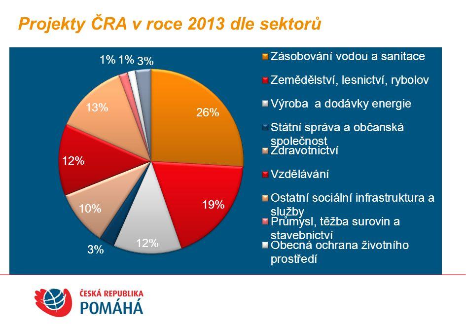 Projekty ČRA v roce 2013 dle typu projektů