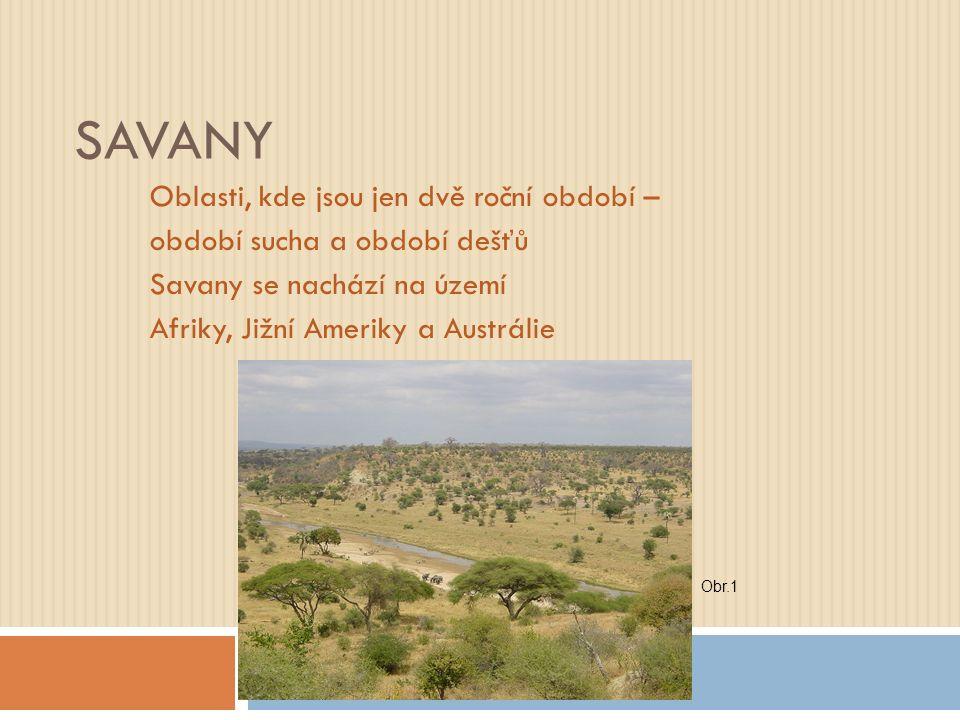 SAVANY Oblasti, kde jsou jen dvě roční období – období sucha a období dešťů Savany se nachází na území Afriky, Jižní Ameriky a Austrálie Obr.1