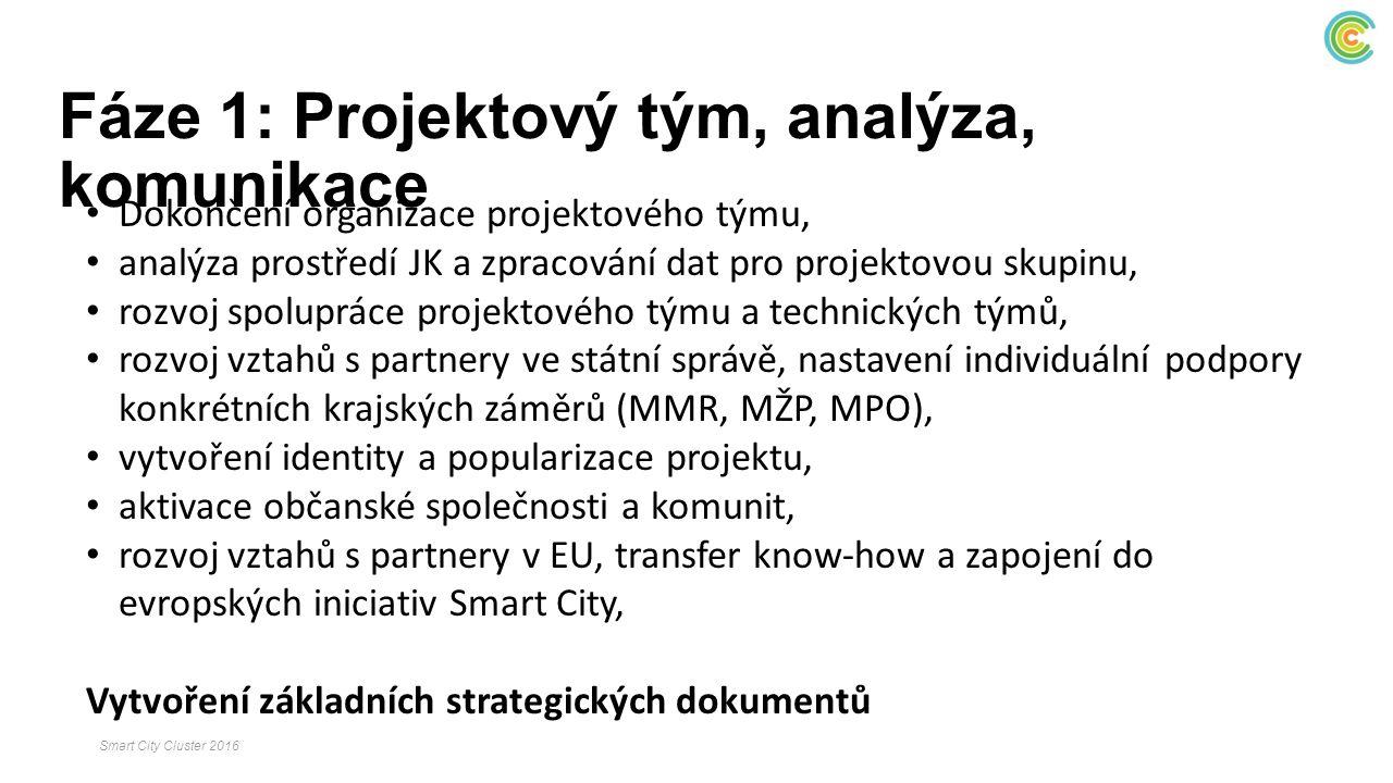 Fáze 1: Projektový tým, analýza, komunikace Dokončení organizace projektového týmu, analýza prostředí JK a zpracování dat pro projektovou skupinu, roz
