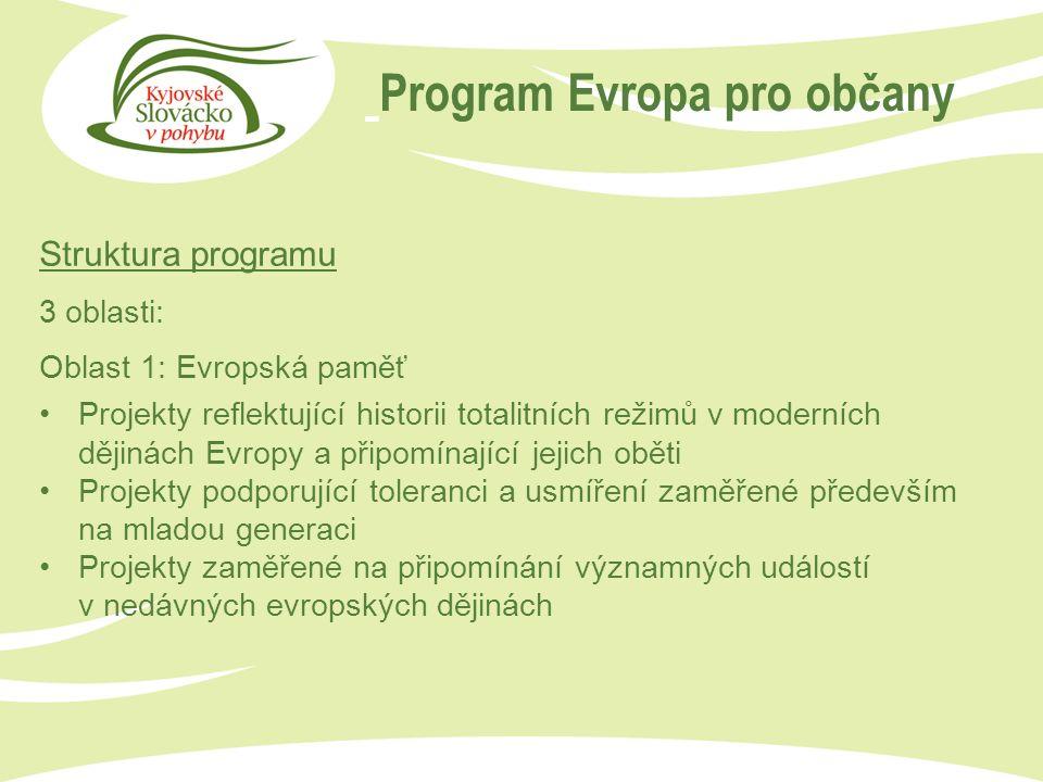 Program Evropa pro občany Struktura programu Oblast 2: Demokratická angažovanost a aktivní občanství Partnerství měst (Town Twinning): Jednorázová setkání občanů partnerských měst Sítě partnerských měst (Network of Towns): Dlouhodobé projekty sítí partnerských měst Projekty občanské společnosti (Civil society Projects): Podpora organizací působících v obecném evropském zájmu Debaty a studie týkající se určujících momentů evropských dějin