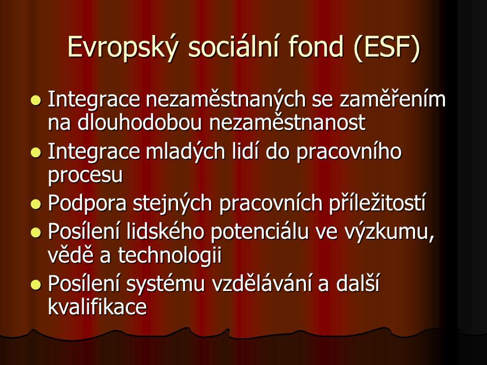 Evropský sociální fond (ESF) Integrace nezaměstnaných se zaměřením na dlouhodobou nezaměstnanost Integrace nezaměstnaných se zaměřením na dlouhodobou nezaměstnanost Integrace mladých lidí do pracovního procesu Integrace mladých lidí do pracovního procesu Podpora stejných pracovních příležitostí Podpora stejných pracovních příležitostí Posílení lidského potenciálu ve výzkumu, vědě a technologii Posílení lidského potenciálu ve výzkumu, vědě a technologii Posílení systému vzdělávání a další kvalifikace Posílení systému vzdělávání a další kvalifikace