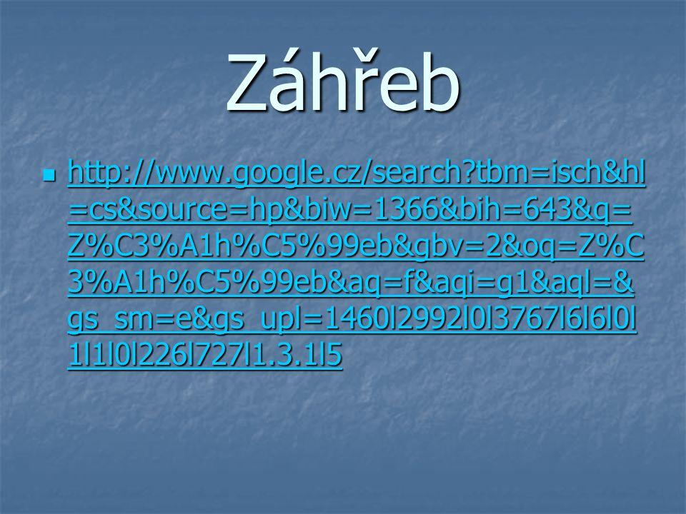 Záhřeb http://www.google.cz/search?tbm=isch&hl =cs&source=hp&biw=1366&bih=643&q= Z%C3%A1h%C5%99eb&gbv=2&oq=Z%C 3%A1h%C5%99eb&aq=f&aqi=g1&aql=& gs_sm=e