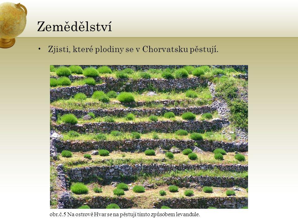 Zemědělství Zjisti, které plodiny se v Chorvatsku pěstují.