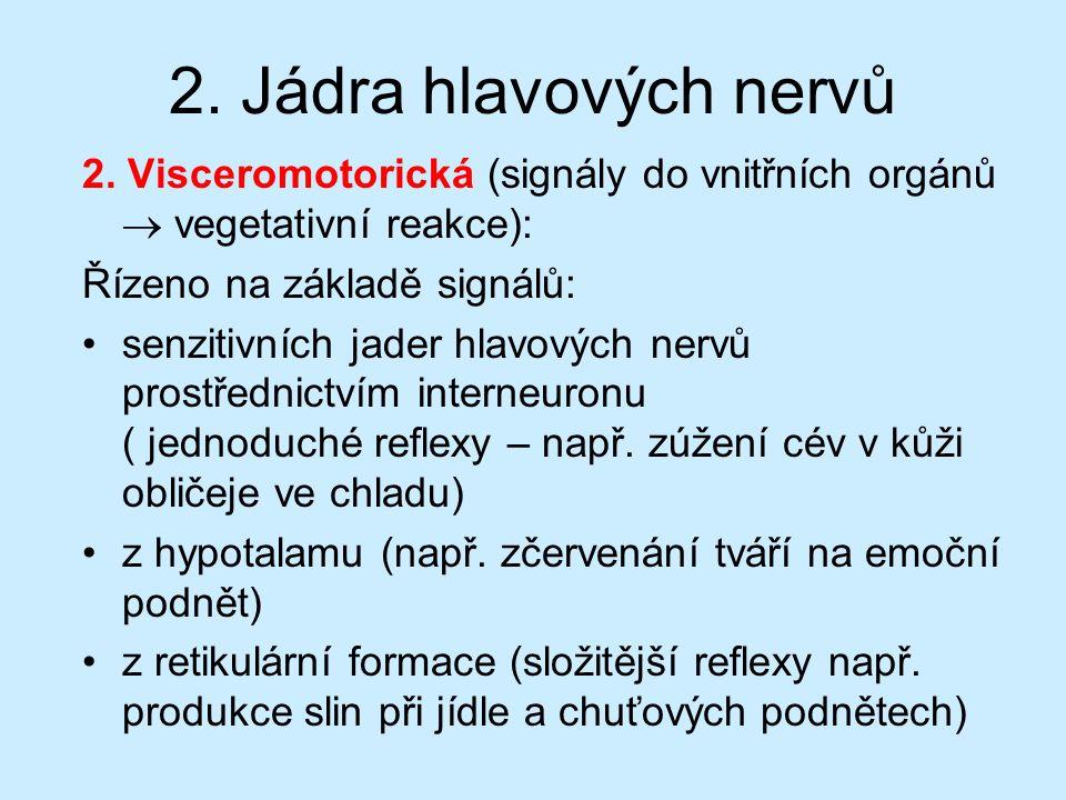 2. Jádra hlavových nervů 2. Visceromotorická (signály do vnitřních orgánů  vegetativní reakce): Řízeno na základě signálů: senzitivních jader hlavový