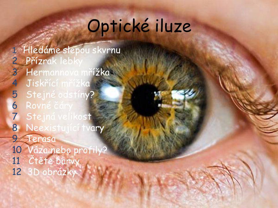 Optické iluze 1 Hledáme slepou skvrnu 2 Přízrak lebky 3 Hermannova mřížka 4 Jiskřící mřížka 5 Stejné odstíny.