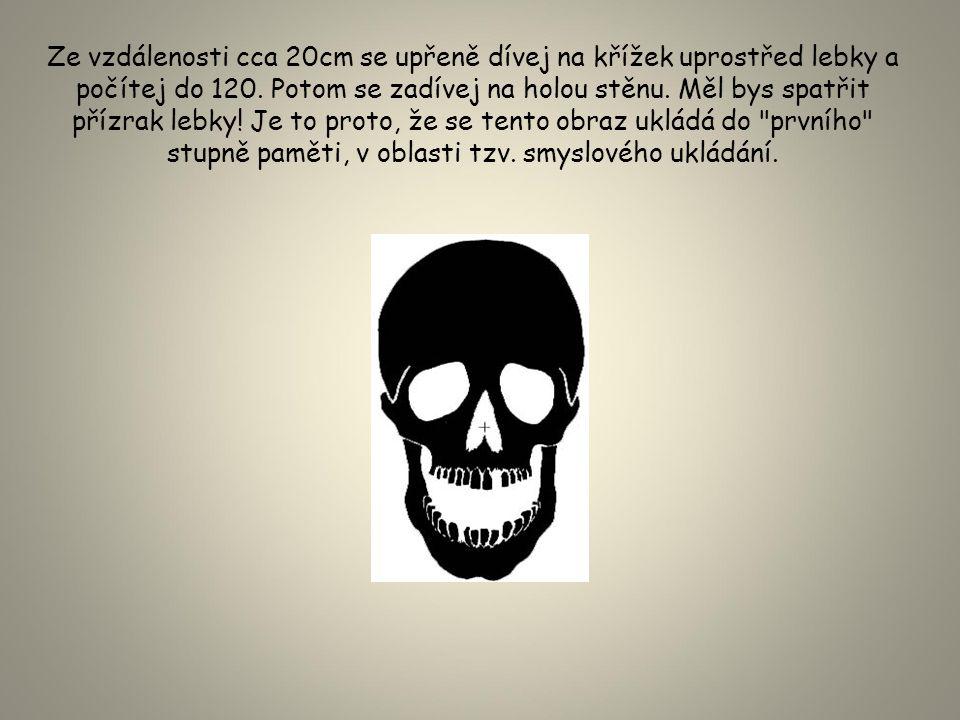 Ze vzdálenosti cca 20cm se upřeně dívej na křížek uprostřed lebky a počítej do 120.