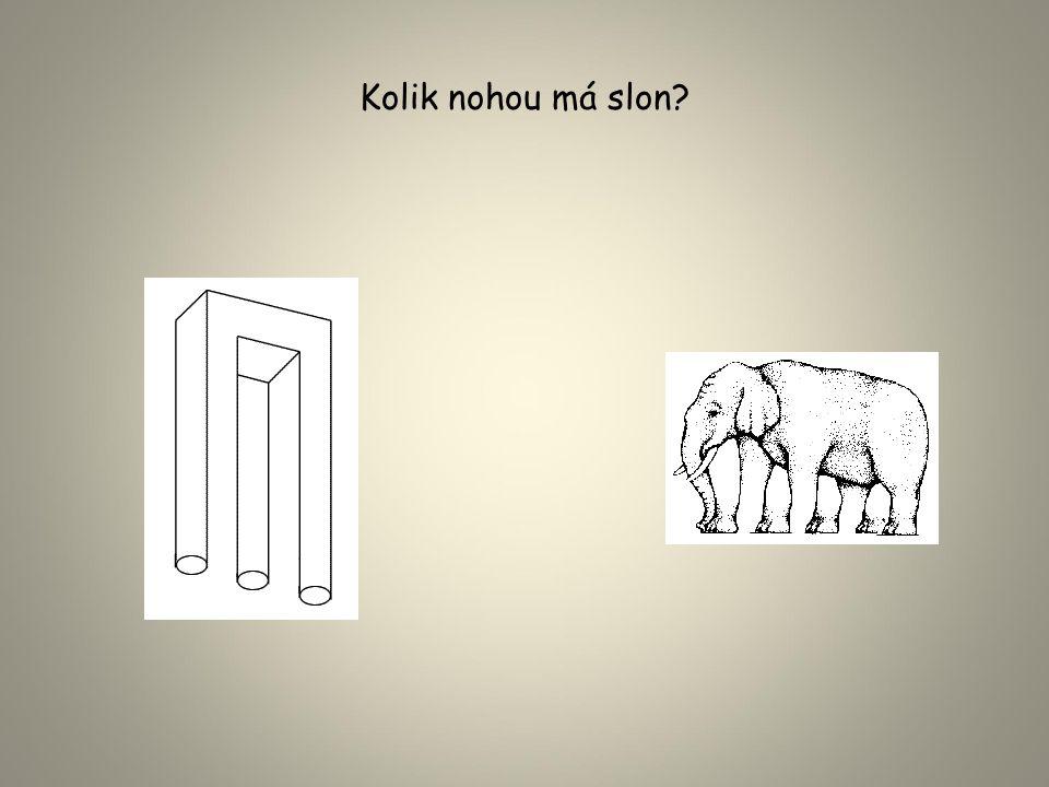 Kolik nohou má slon