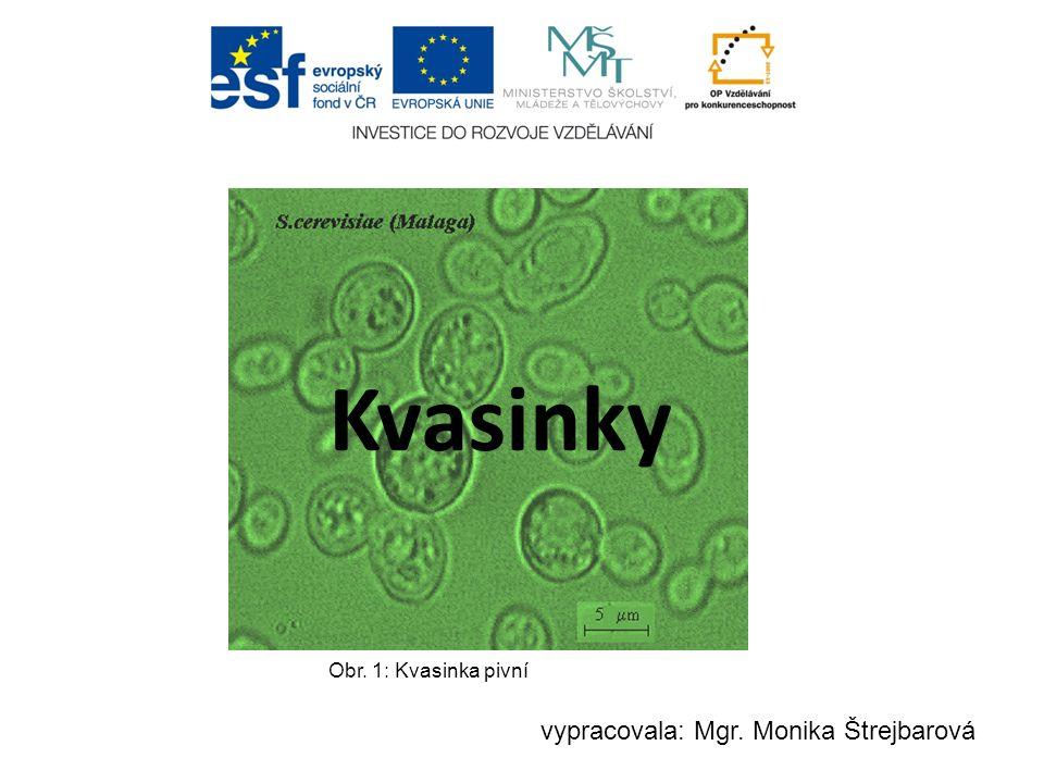 Kvasinky Obr. 1: Kvasinka pivní vypracovala: Mgr. Monika Štrejbarová