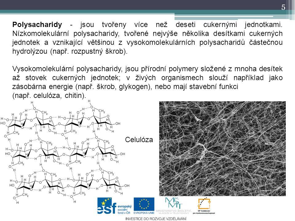 Význam 6 Sacharidy jsou jedny ze základních přírodních látek v rostlinných i živočišných organismech.