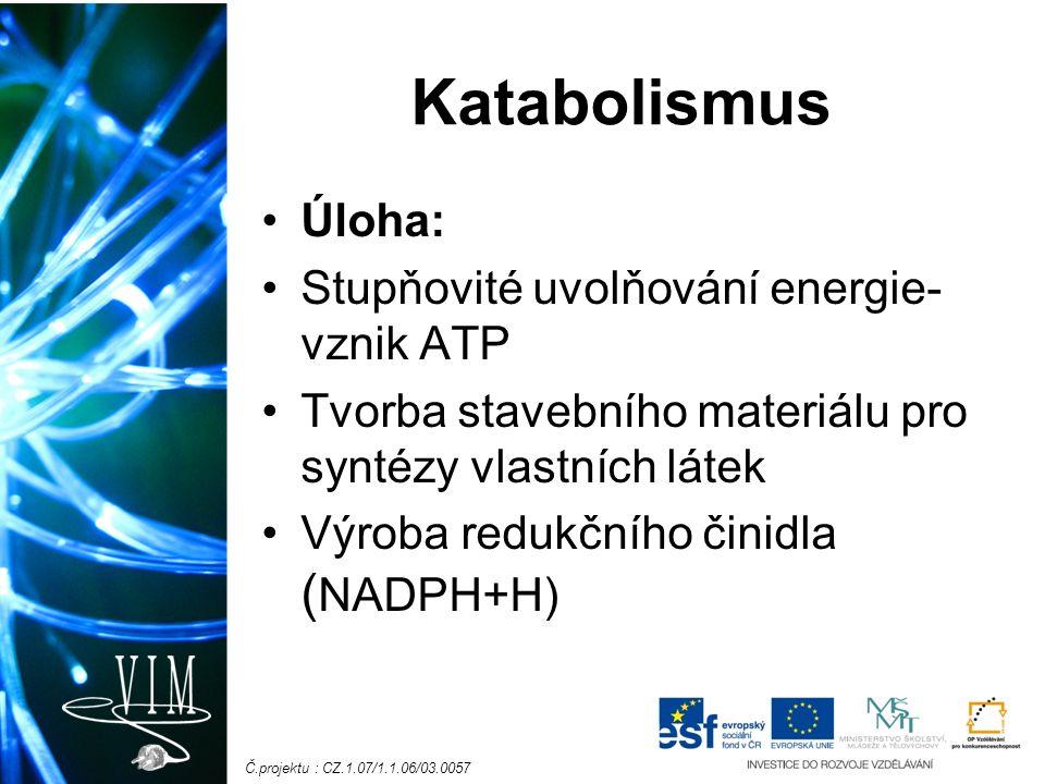 Č.projektu : CZ.1.07/1.1.06/03.0057 Katabolismus Úloha: Stupňovité uvolňování energie- vznik ATP Tvorba stavebního materiálu pro syntézy vlastních látek Výroba redukčního činidla ( NADPH+H)