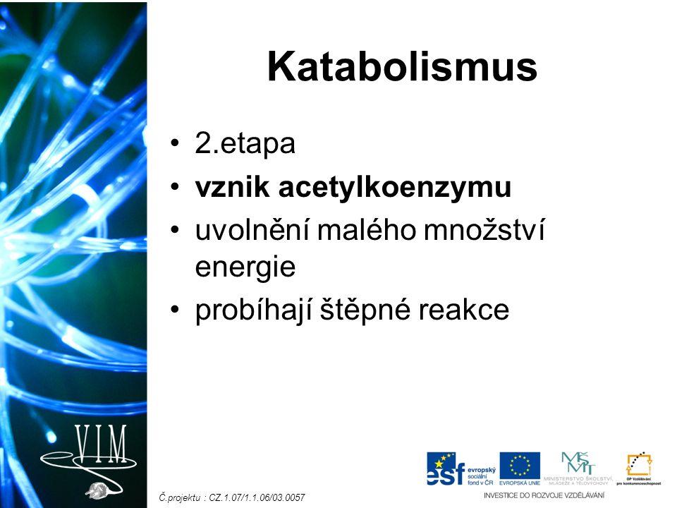 Č.projektu : CZ.1.07/1.1.06/03.0057 Katabolismus 2.etapa vznik acetylkoenzymu uvolnění malého množství energie probíhají štěpné reakce