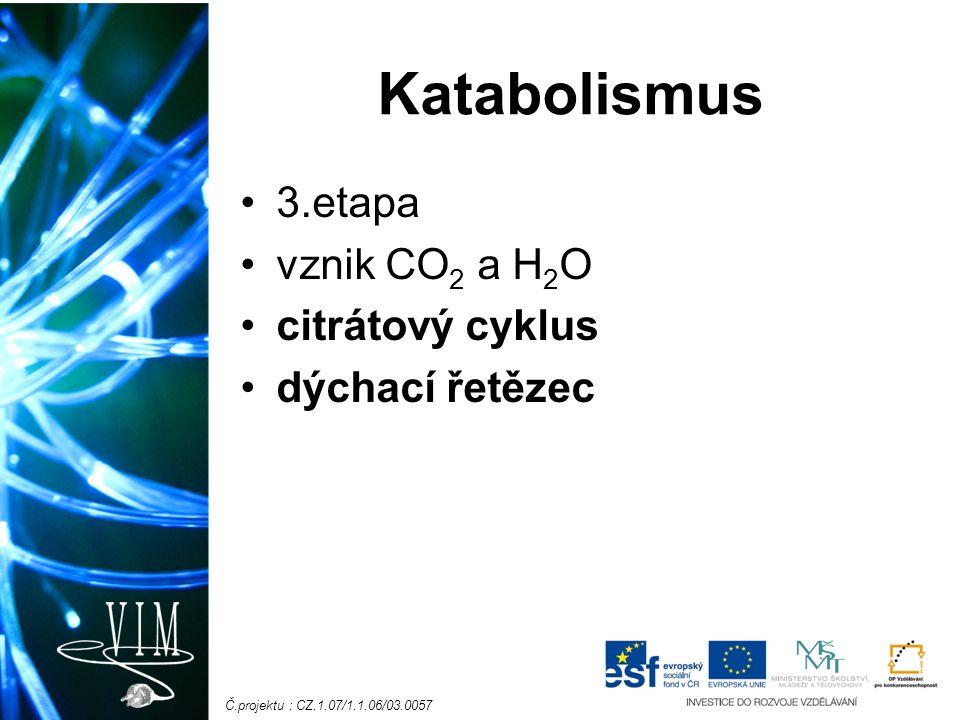 Č.projektu : CZ.1.07/1.1.06/03.0057 Katabolismus 3.etapa vznik CO 2 a H 2 O citrátový cyklus dýchací řetězec
