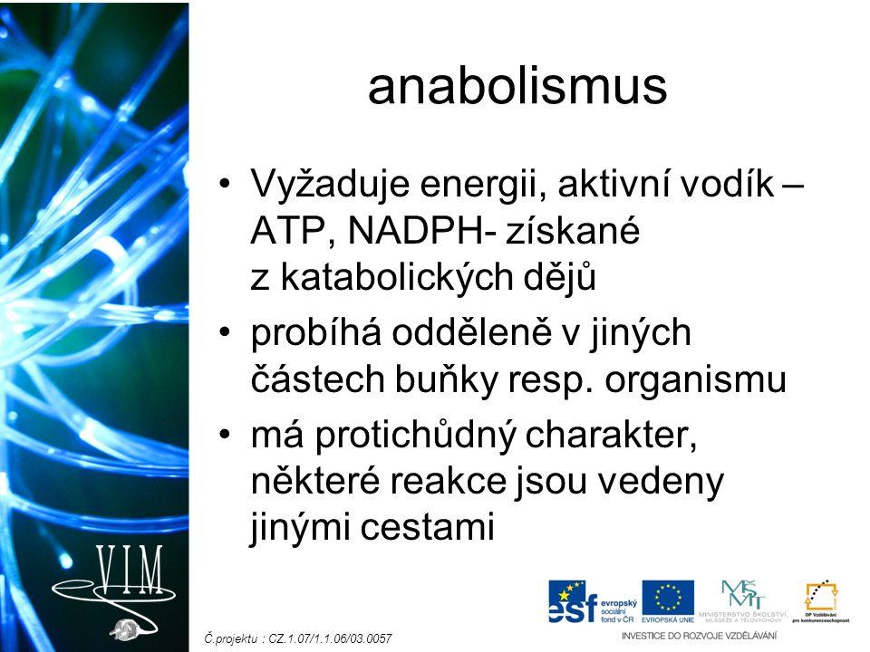Č.projektu : CZ.1.07/1.1.06/03.0057 anabolismus Vyžaduje energii, aktivní vodík – ATP, NADPH- získané z katabolických dějů probíhá odděleně v jiných částech buňky resp.