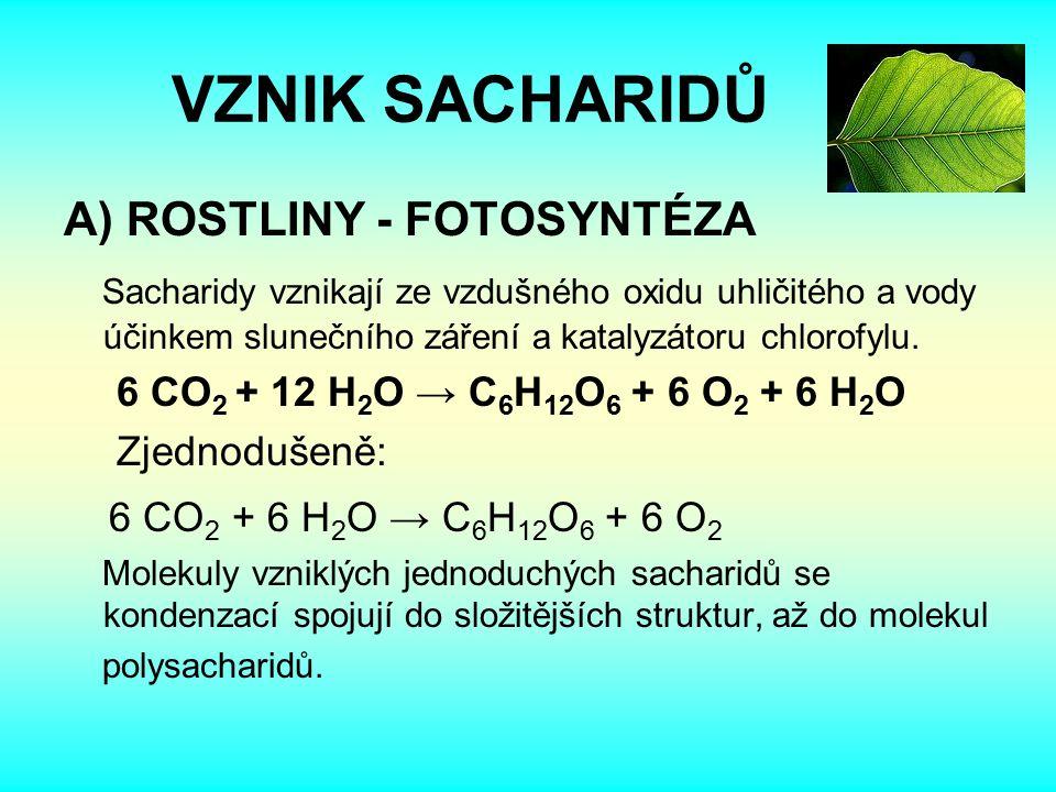 VZNIK SACHARIDŮ A) ROSTLINY - FOTOSYNTÉZA Sacharidy vznikají ze vzdušného oxidu uhličitého a vody účinkem slunečního záření a katalyzátoru chlorofylu.