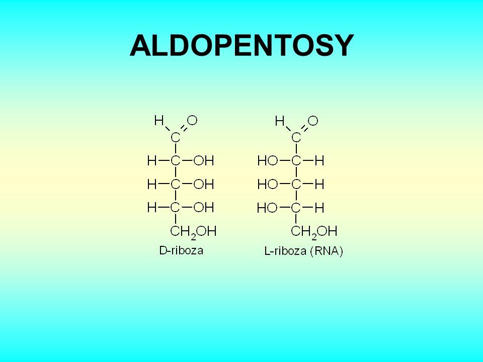KETOHEXOSA Počet optických izomerů příslušné aldosy nebo ketosy je dán počtem chirálních atomů uhlíku ( výrazem 2 n, kde n je počet C * ).