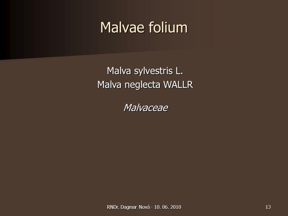Malvae folium Malva sylvestris L. Malva neglecta WALLR Malvaceae 13RNDr. Dagmar Nová - 10. 06. 2010