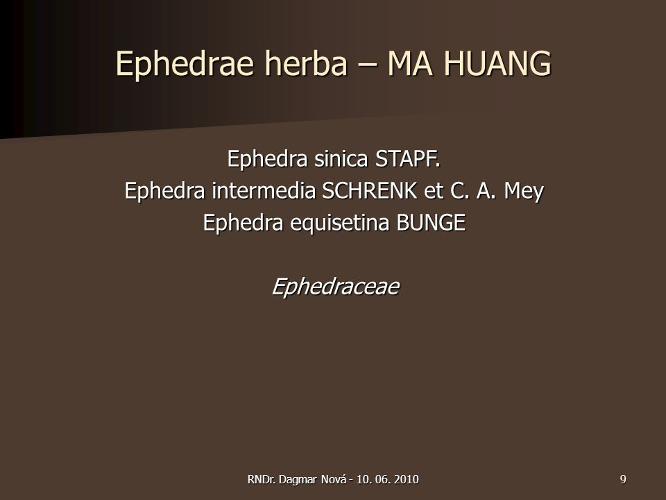 Ephedrae herba – MA HUANG Ephedra sinica STAPF. Ephedra intermedia SCHRENK et C. A. Mey Ephedra equisetina BUNGE Ephedraceae 9RNDr. Dagmar Nová - 10.
