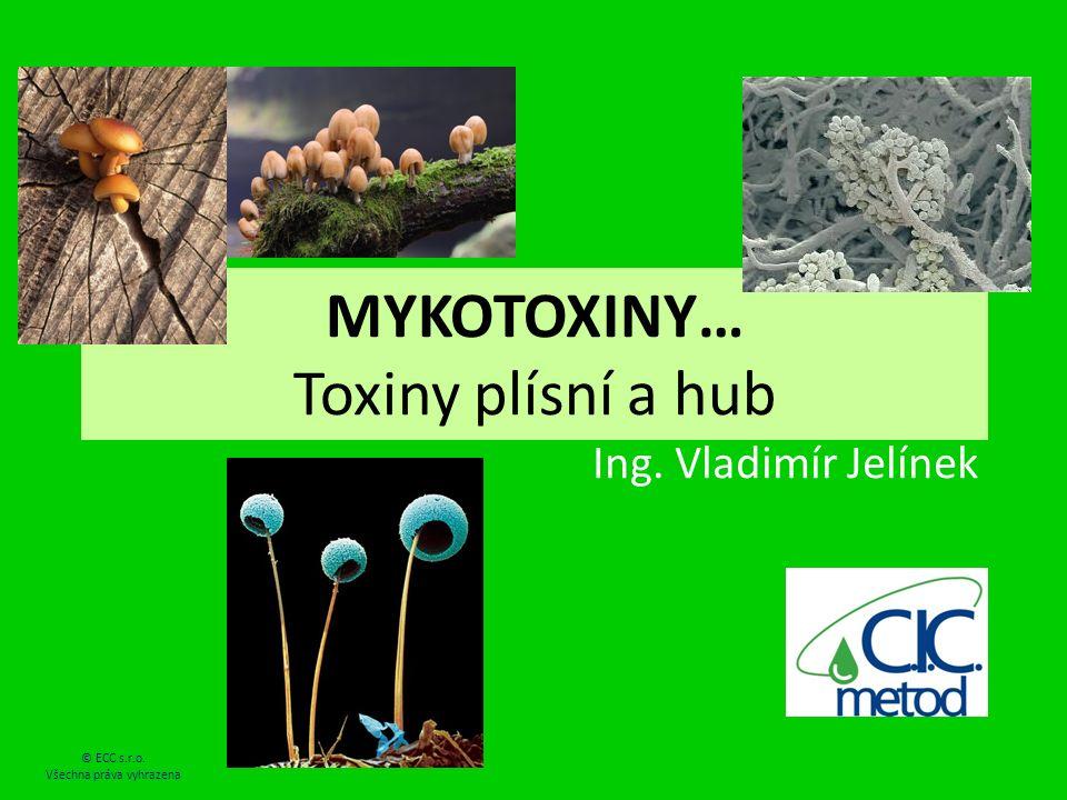 MYKOTOXINY… Toxiny plísní a hub Ing. Vladimír Jelínek © ECC s.r.o. Všechna práva vyhrazena