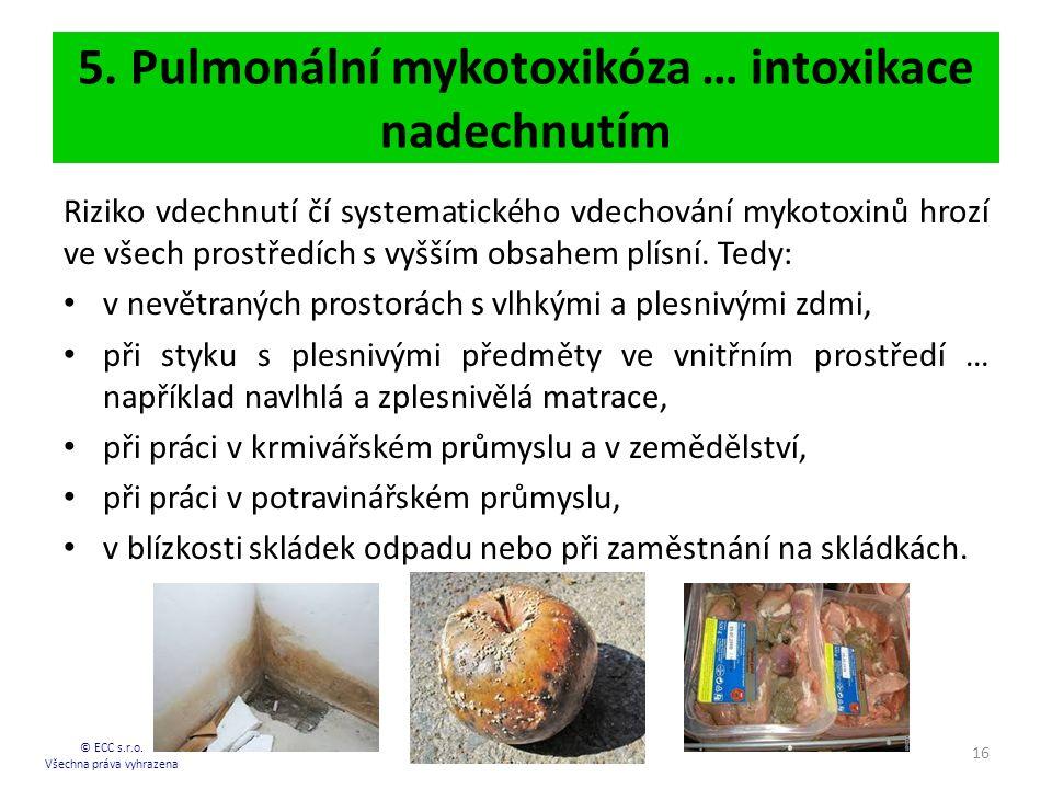 5.Pulmonální mykotoxikóza … intoxikace nadechnutím © ECC s.r.o.