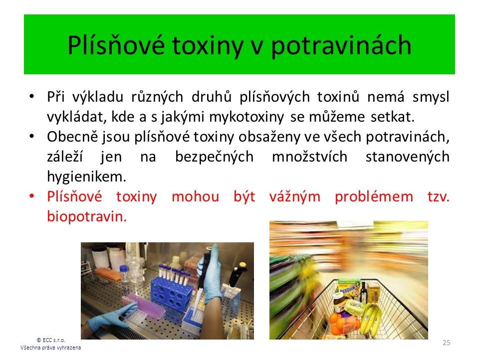 Plísňové toxiny v potravinách © ECC s.r.o.