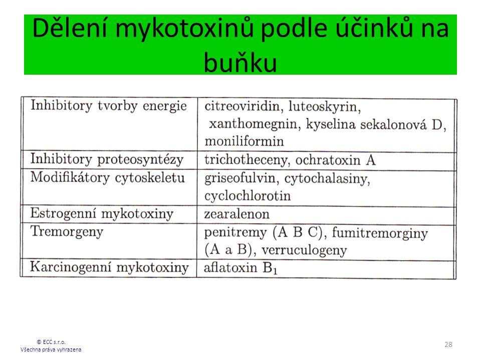 Dělení mykotoxinů podle účinků na buňku © ECC s.r.o. Všechna práva vyhrazena 28