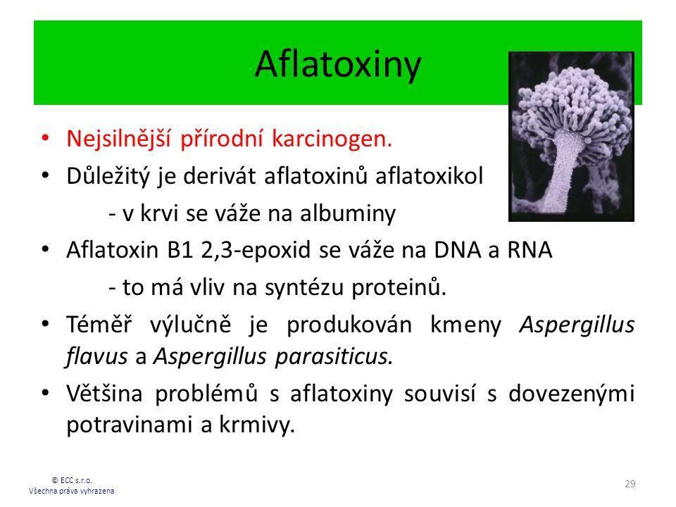 Aflatoxiny © ECC s.r.o.Všechna práva vyhrazena 29 Nejsilnější přírodní karcinogen.