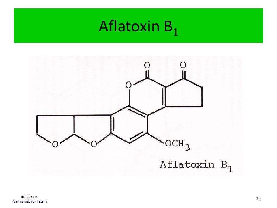 Aflatoxin B 1 © ECC s.r.o. Všechna práva vyhrazena 30