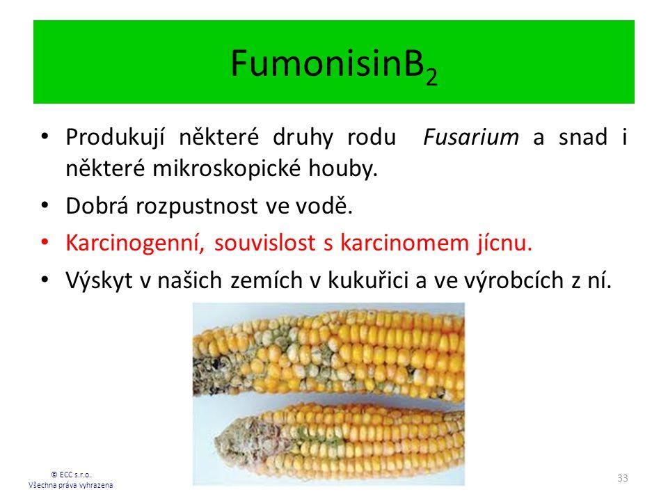 FumonisinB 2 © ECC s.r.o.