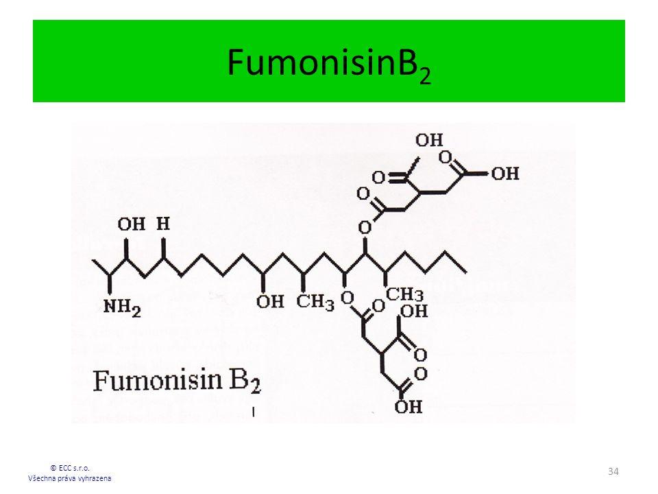 FumonisinB 2 © ECC s.r.o. Všechna práva vyhrazena 34