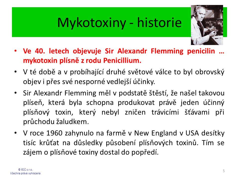 Mykotoxiny - historie © ECC s.r.o.Všechna práva vyhrazena 5 Ve 40.