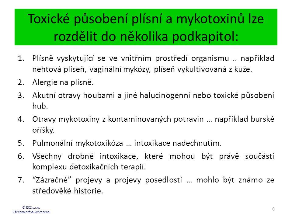 Toxické působení plísní a mykotoxinů lze rozdělit do několika podkapitol: © ECC s.r.o.