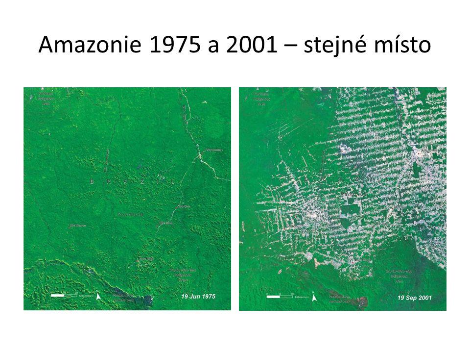 Amazonie 1975 a 2001 – stejné místo