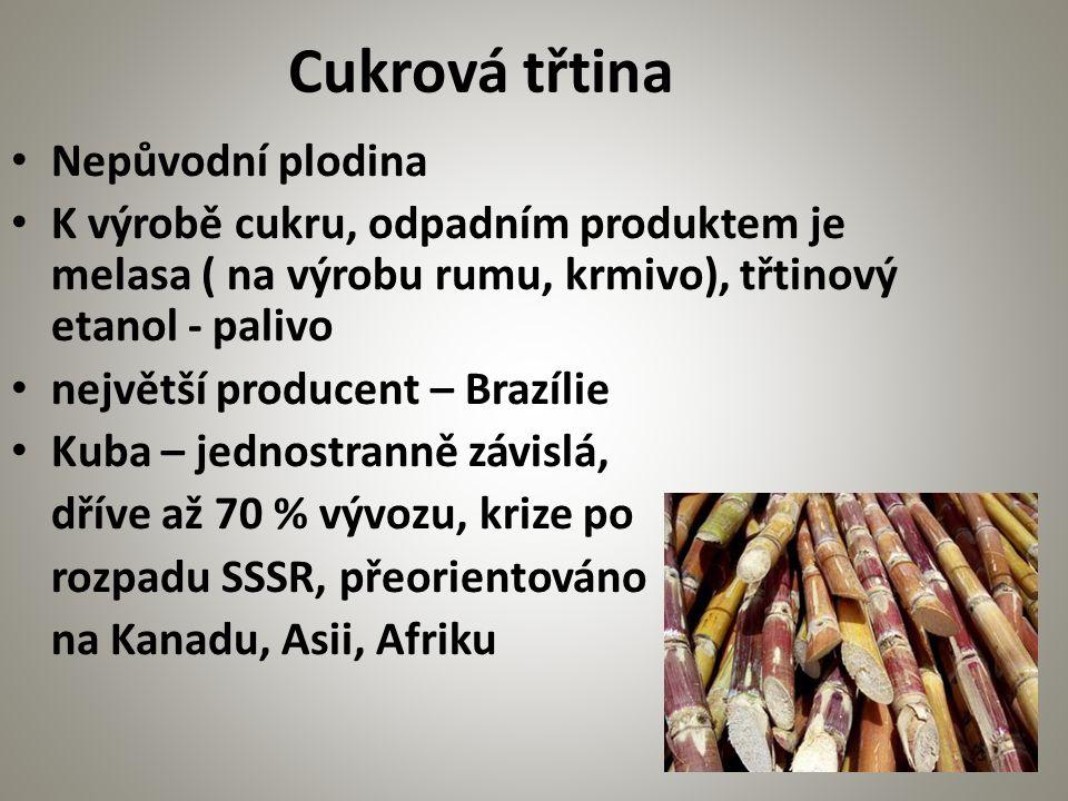 Nepůvodní plodina K výrobě cukru, odpadním produktem je melasa ( na výrobu rumu, krmivo), třtinový etanol - palivo největší producent – Brazílie Kuba – jednostranně závislá, dříve až 70 % vývozu, krize po rozpadu SSSR, přeorientováno na Kanadu, Asii, Afriku Cukrová třtina