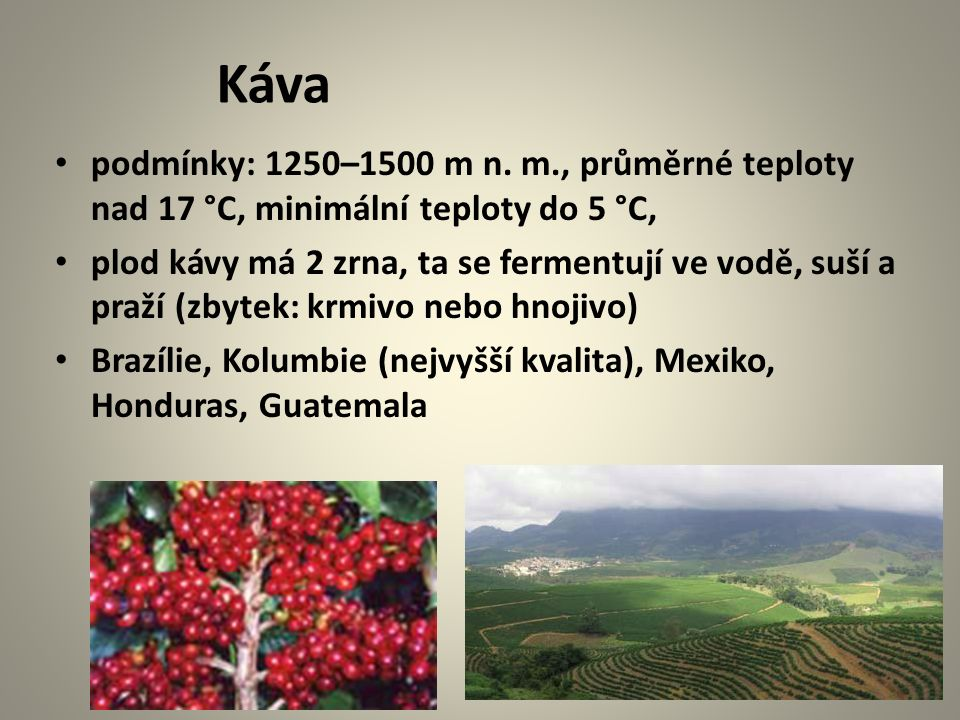 Káva podmínky: 1250–1500 m n. m., průměrné teploty nad 17 °C, minimální teploty do 5 °C, plod kávy má 2 zrna, ta se fermentují ve vodě, suší a praží (