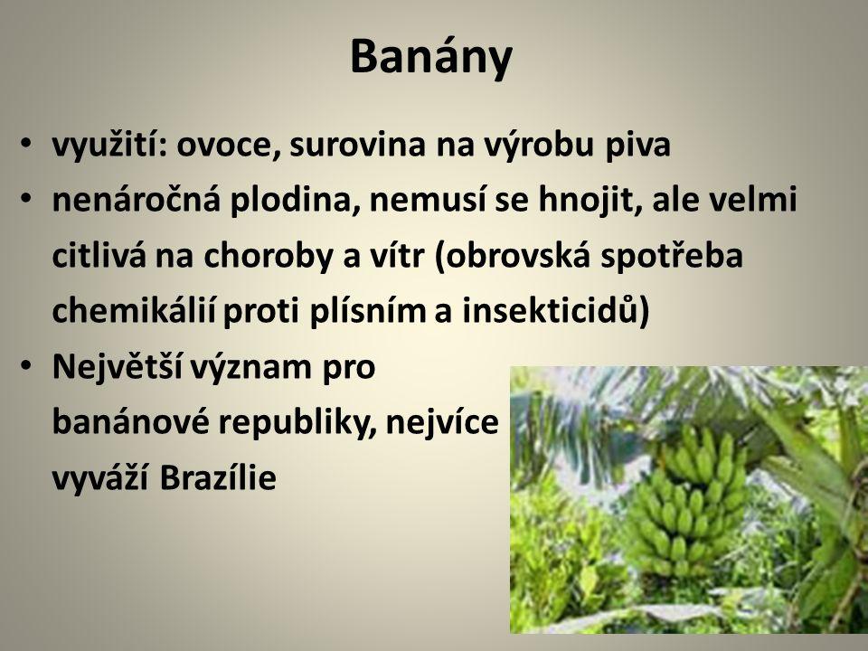 Banány využití: ovoce, surovina na výrobu piva nenáročná plodina, nemusí se hnojit, ale velmi citlivá na choroby a vítr (obrovská spotřeba chemikálií