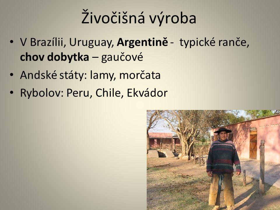 Živočišná výroba V Brazílii, Uruguay, Argentině - typické ranče, chov dobytka – gaučové Andské státy: lamy, morčata Rybolov: Peru, Chile, Ekvádor