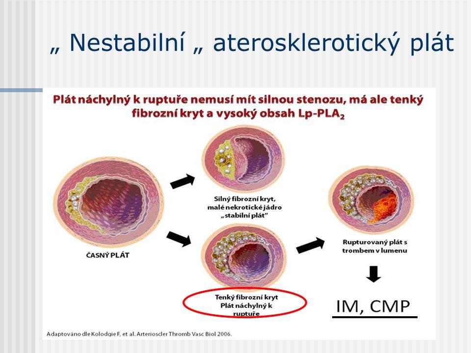 """"""" Nestabilní """" aterosklerotický plát"""
