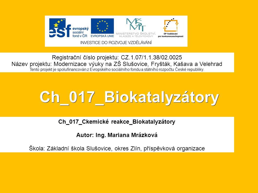 Ch_017_Biokatalyzátory Ch_017_Ckemické reakce_Biokatalyzátory Autor: Ing.