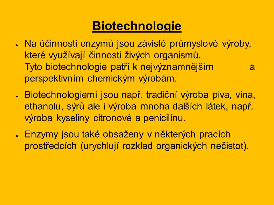 Biotechnologie ● Na účinnosti enzymů jsou závislé průmyslové výroby, které využívají činnosti živých organismů. Tyto biotechnologie patří k nejvýznamn