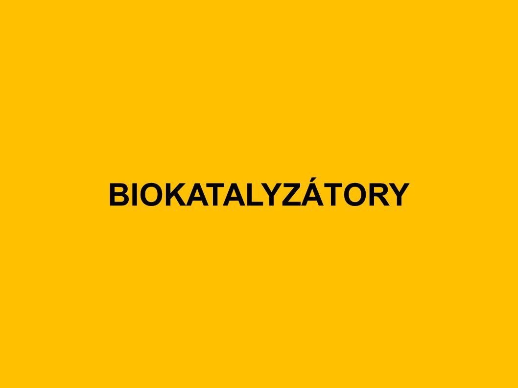 BIOKATALYZÁTORY