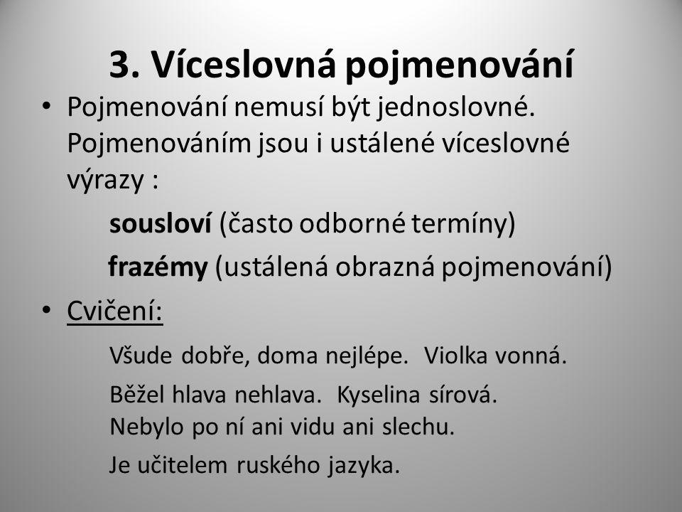 3. Víceslovná pojmenování Pojmenování nemusí být jednoslovné.